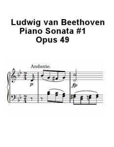 beethoven-op49